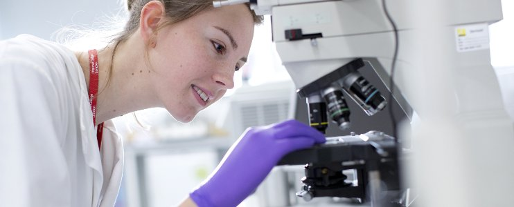 British Neuroscience Association - training, careers, jobs