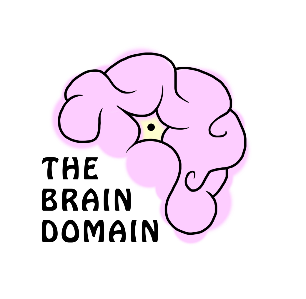 Online Resources About Neuroscience The British Neuroscience