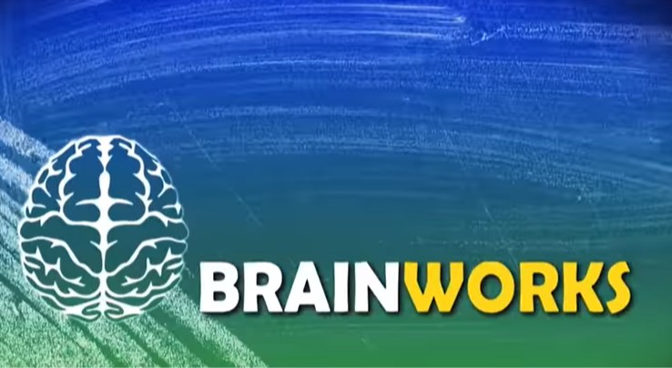 'Brainworks' text with white brain on chalkboard