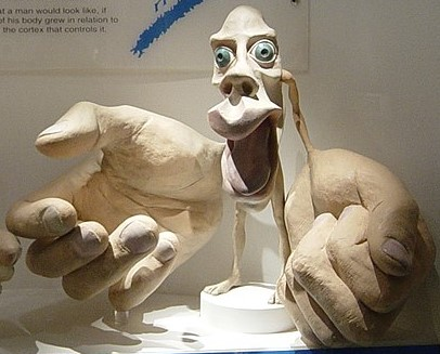 Model of a man with very large hands and lips, small legs